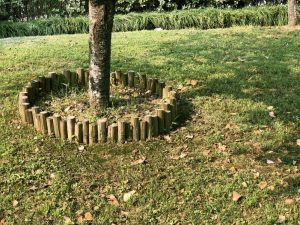 Protecting Your Tree When Landscaping